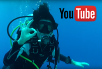 duikteamdewalvis-youtube