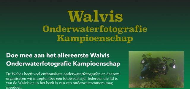 Walvis Kampioenschap Onderwaterfotografie
