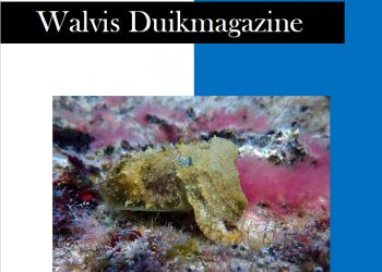 Walvis Magazine.